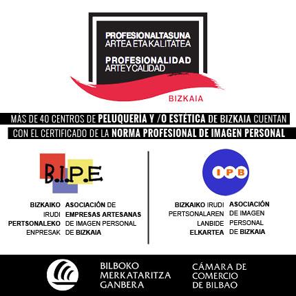 Certificado de la Norma profesional del sector de Imagen personal